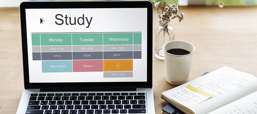 Organized Student Schedule
